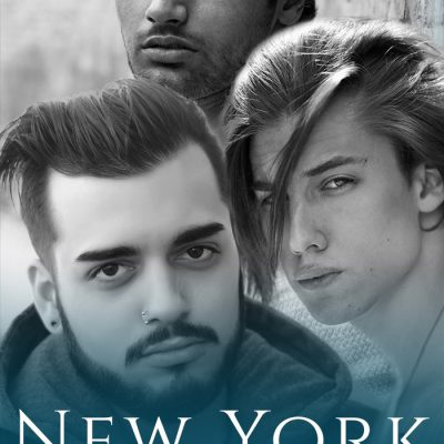 Cover Reveal – New York Nightwings – The Complete Collection – V.L. Locey